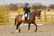 Epworth Dressage